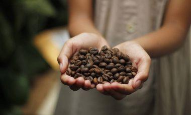 coffee-4591159_1280.jpg