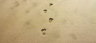 footprint-1021452_1280-e1608217692339.jpg